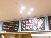Yamatofes6